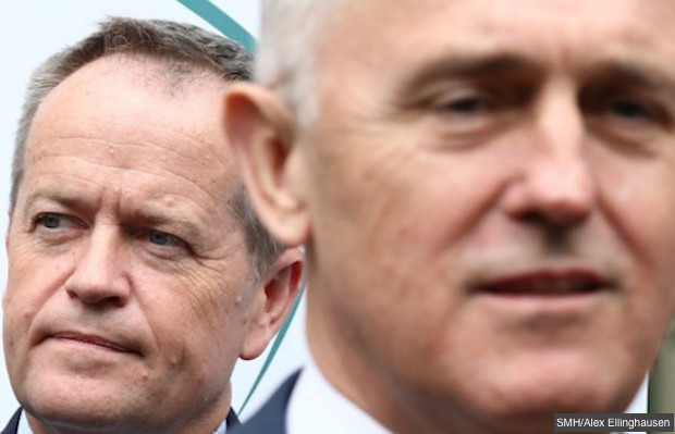 turnbull & shorten