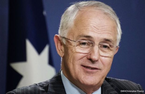 turnbull-quits-while-ahead