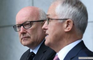 brandis and turnbull