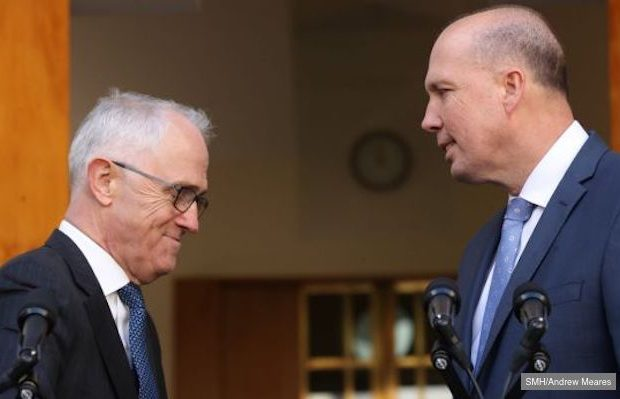 dutton and turnbull