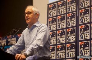 malcolm turnbull yes