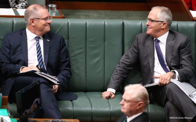 turnbull and morrison