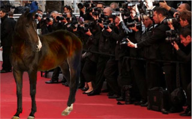 leonardo dicaprio oscars horse