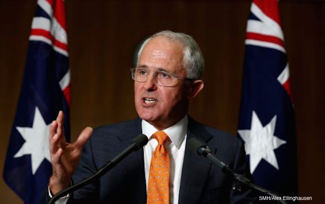 turnbull calls election