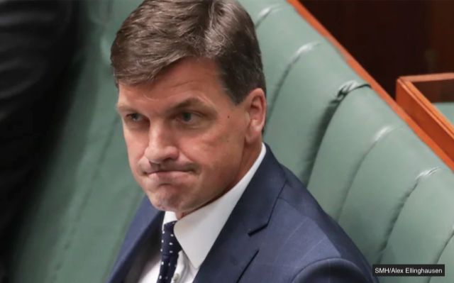 angus taylor satire