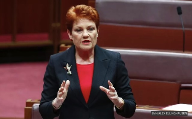 Pauline Hanson Condemns Use Of Term 'Black Friday', Saying 'All Fridays Matter'